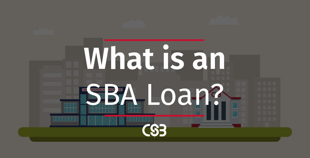 what-is-an-SBA-loan-how-does-it-differ-from-standard-small-business-loans